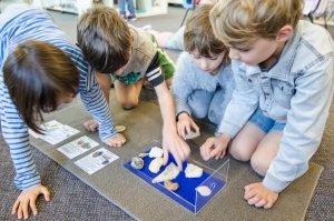 Children looking at fossils.